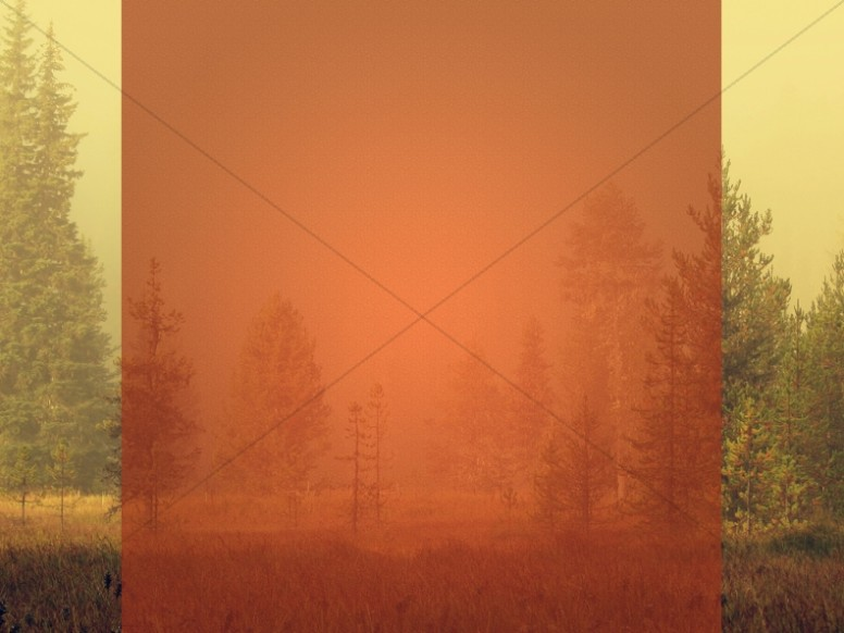 Give Thanks Religious Wallpaper