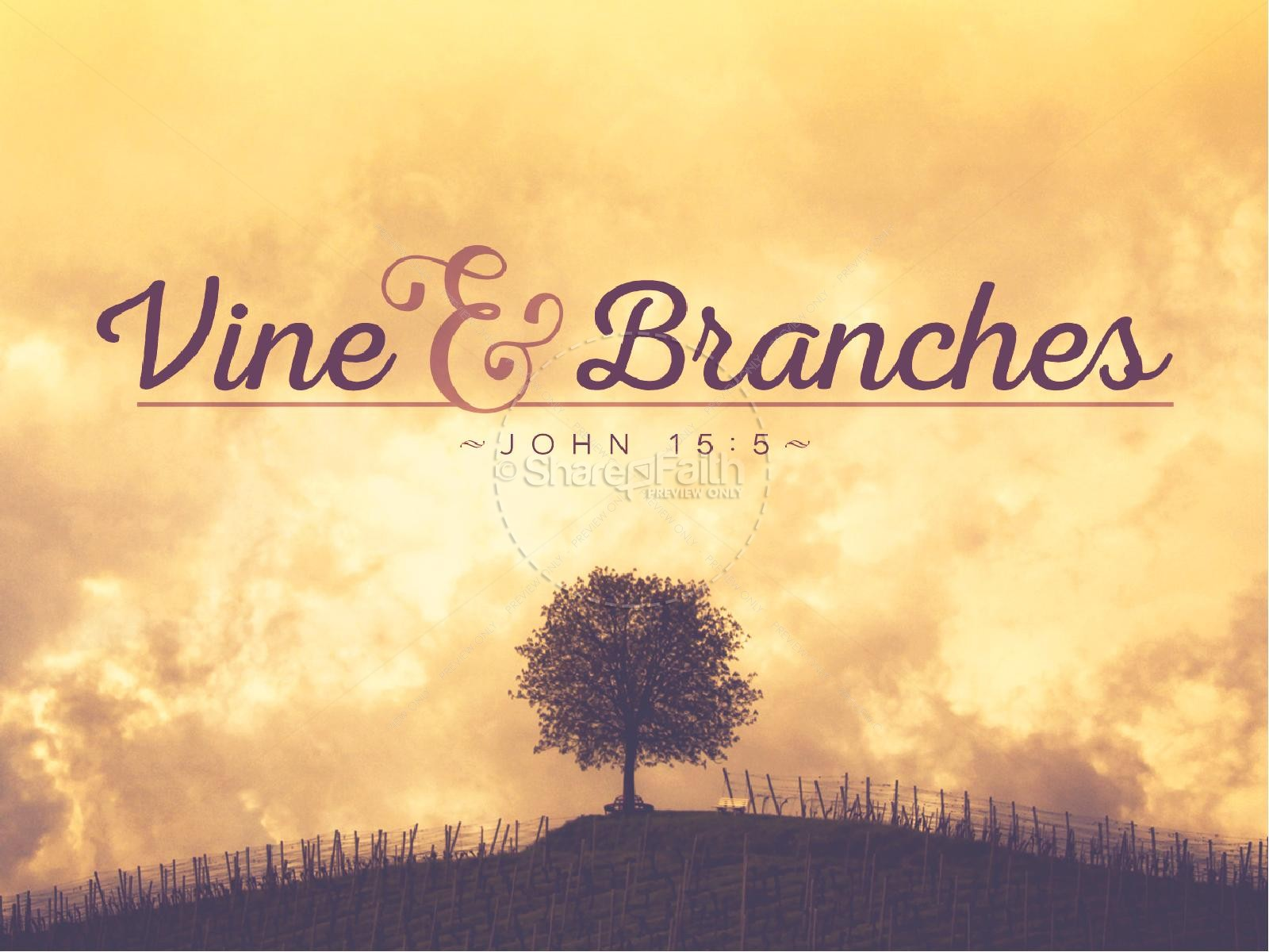Vine and Branches Religious PowerPoint | slide 1
