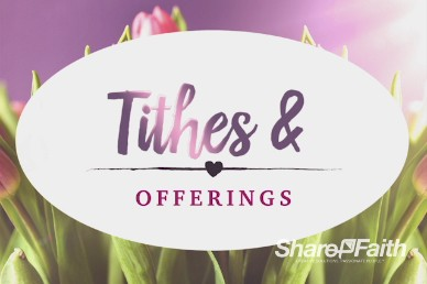 Pink Tulip Mother's Day Christian Offerings Video Background