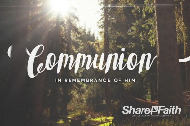 Easter Sunday Forest Communion Video Loop