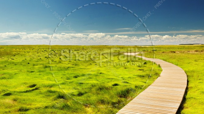 Walkway Through the Meadow Christian Stock Photo