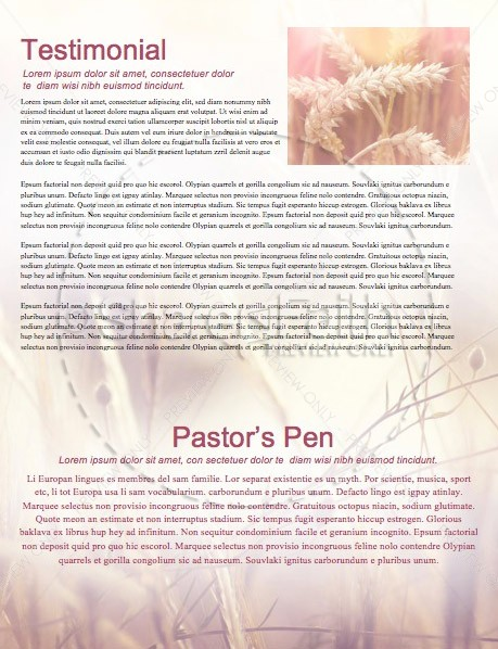 Authentic Faith Church Newsletter