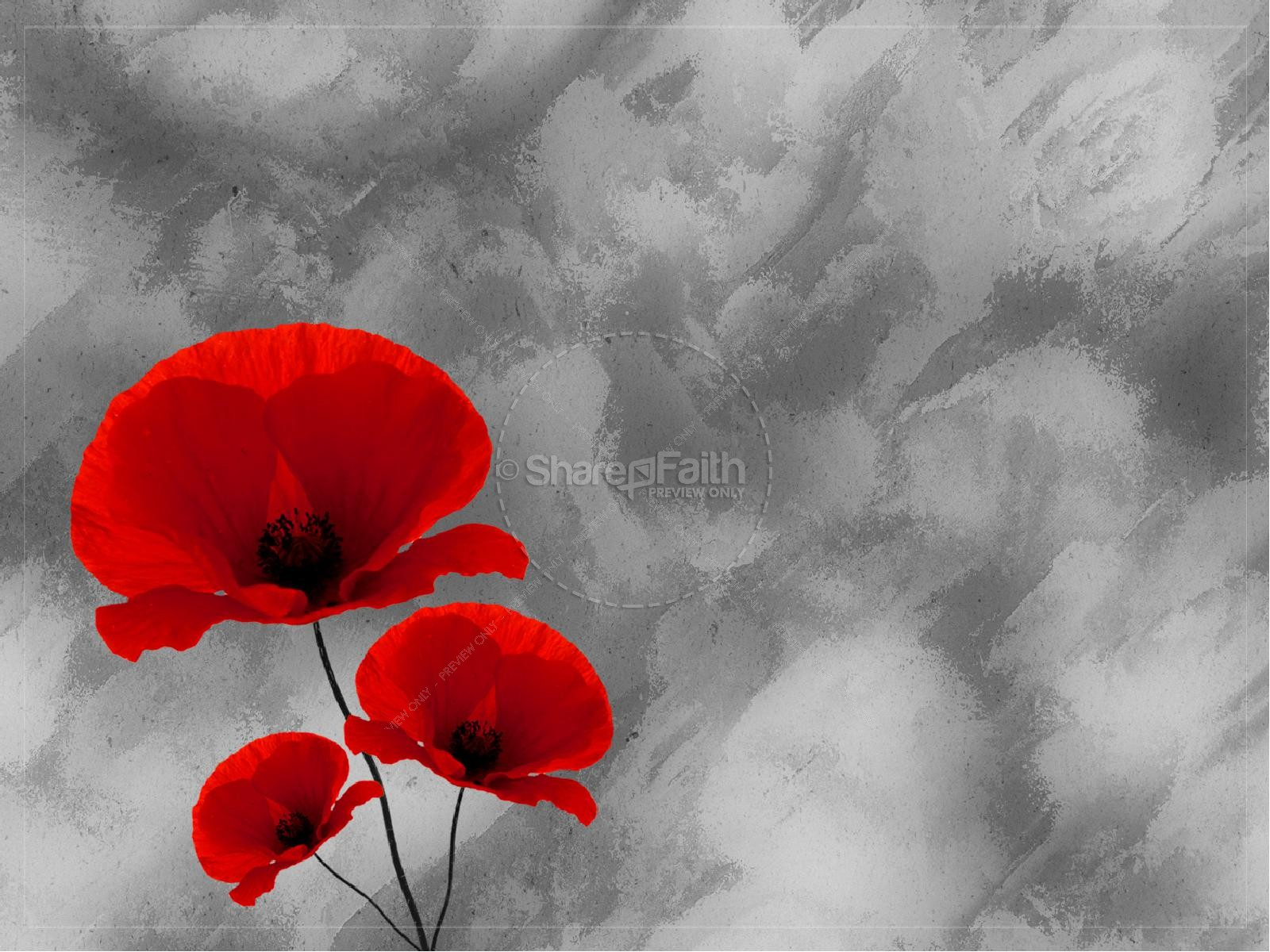 Remembrance Sunday - PowerPoint PPT Presentation