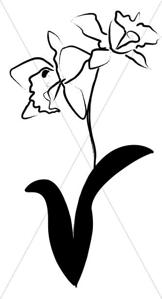 Orchid Ink Sketch