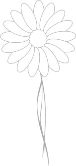 Light Stem on Daisy Blossom