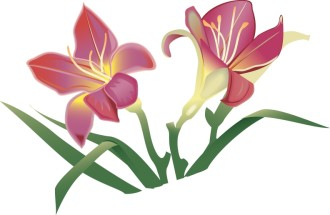 Easter Lillies in Pink