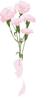Pink Carnation Gift Bouquet