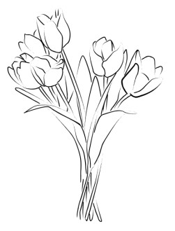 Tulip Bouquet Sketch