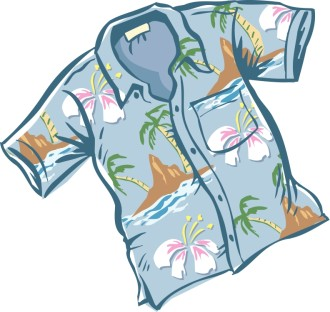 Nice Blue Hawaiian Shirt