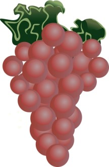 Red Grapes Clipart
