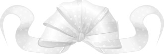 White Fancy Ribbon Bow