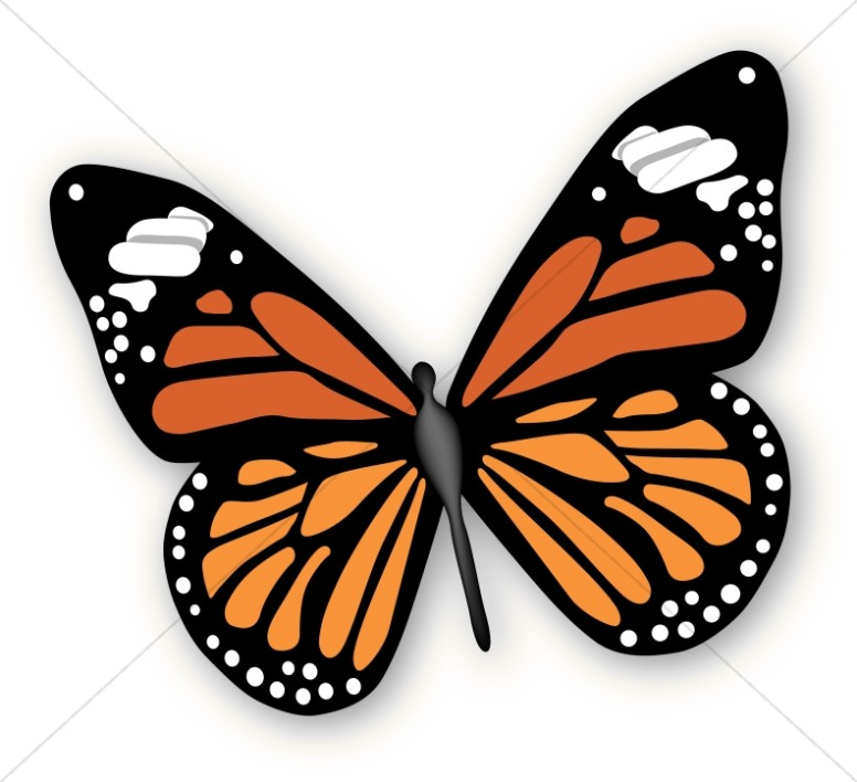 Modern Rendering of a Monarch Butterfly