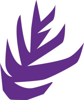 Abstract Purple Foliage