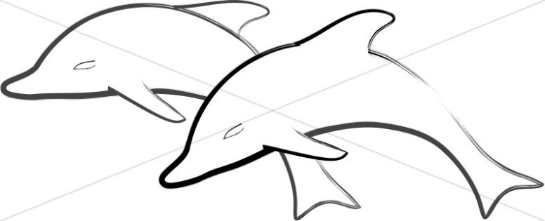 Two Simple Dolphins Jumping