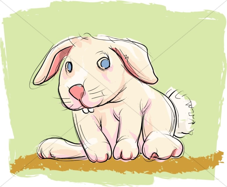 Bunny with Green Background