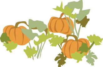 Pumpkin Patch with Foliage