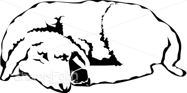 The Sleeping Lamb In Black And White Christian Shepherd