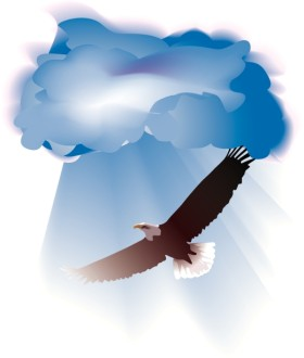 Realistic Eagle Soars through Clouds