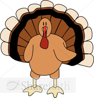 Cute Turkey