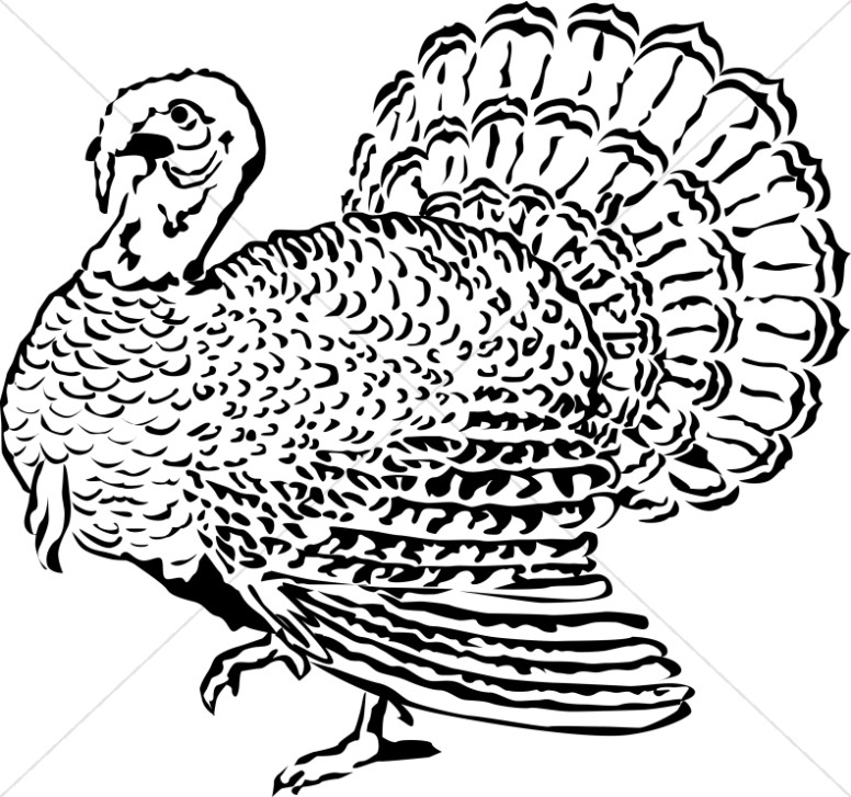 Woodcut Style Turkey