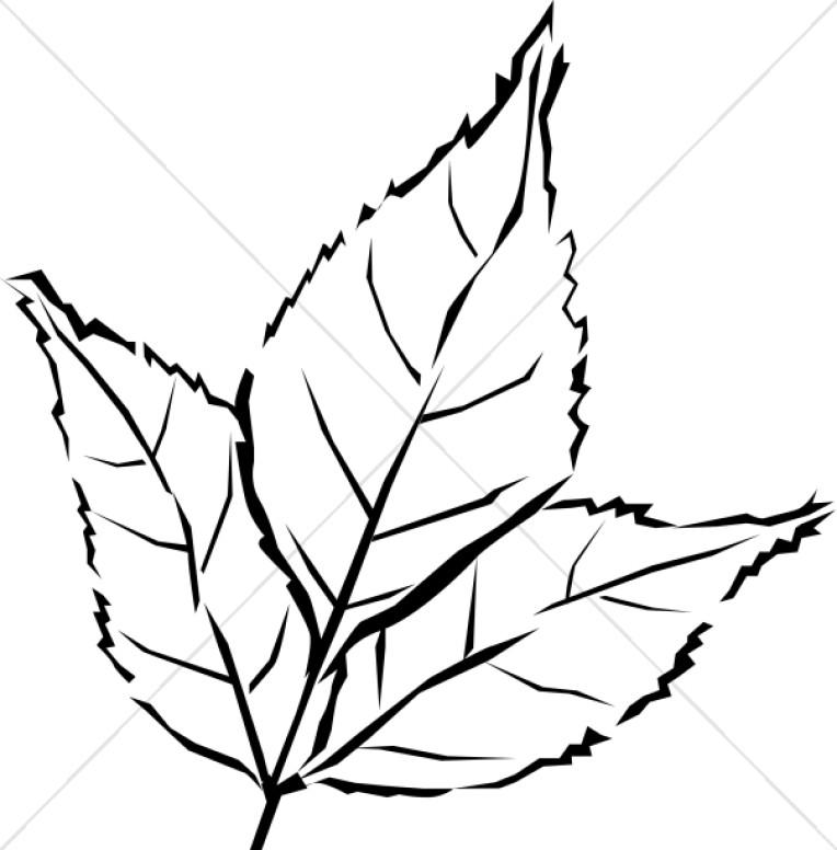 Woodcut Style Tri Leaf