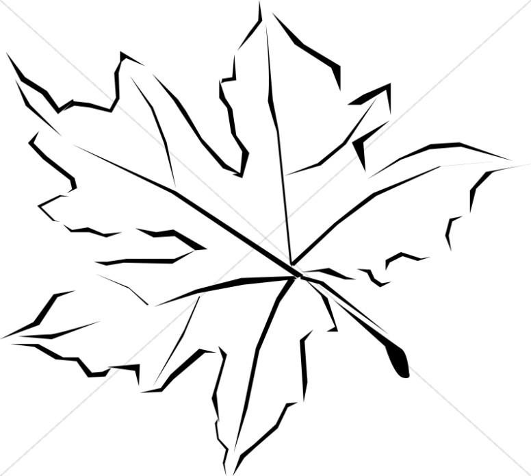 Line Art Leaves : Black and white oak leaf clipart