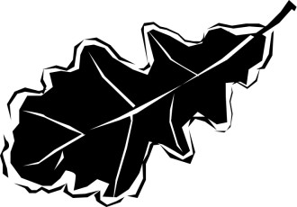 Black and White Oak Leaf