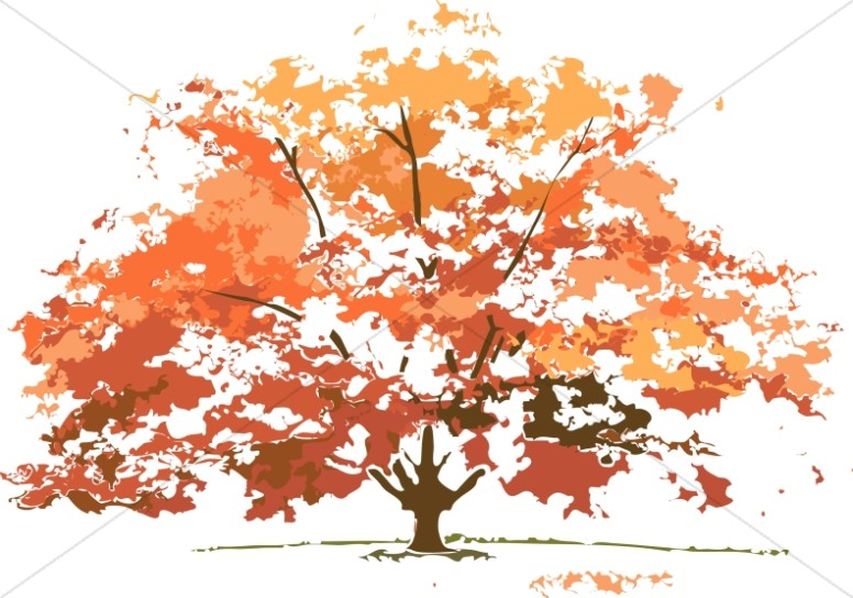 Fall Colors Maple Tree Nature Clipart