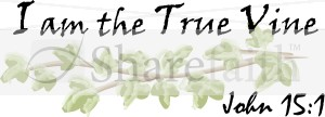I am the True Vine Scripture   John 15:1
