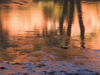 Sunset Reflection in River