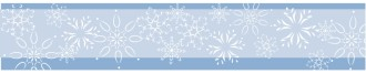 Elegeant Snowflake Footer Bar