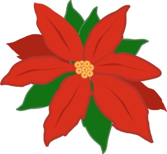 Red Poinsettia Flower
