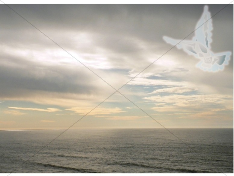 White Dove Flying over Ocean