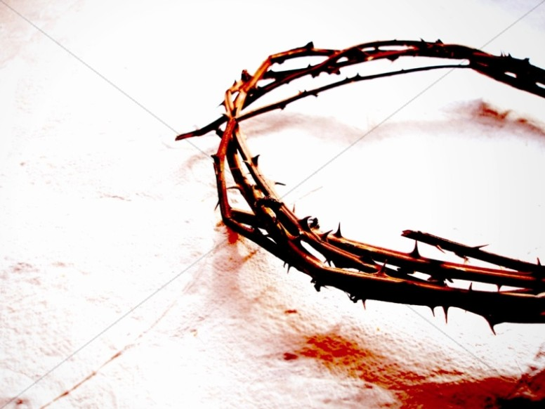 Crown of Thorns in Color