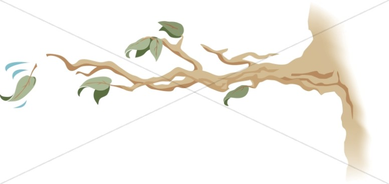 Tree Branch with Falling Leaf