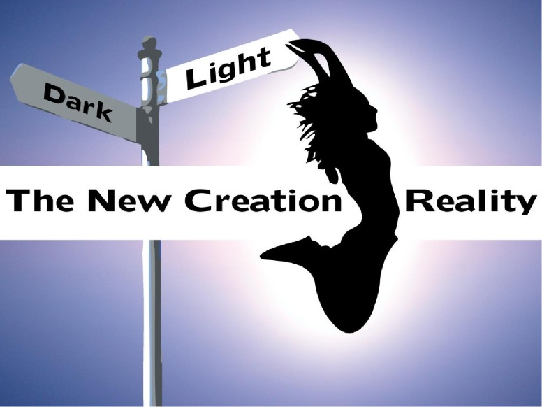 New Creation Reality Silhouette