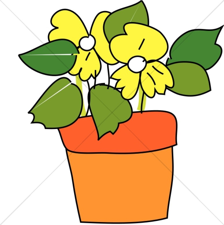 Pot with Yellow Flowers