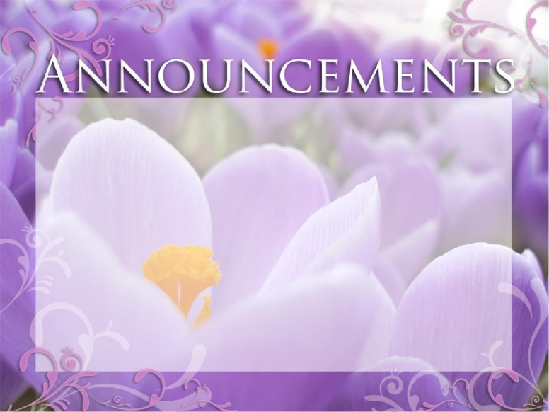 Announcements with Purple Flowers
