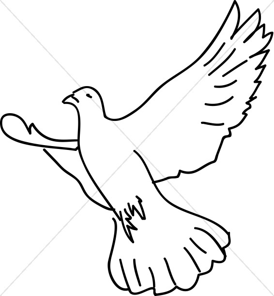Dove Soaring with Wings Expanded