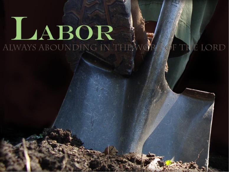 Labor PowerPoint
