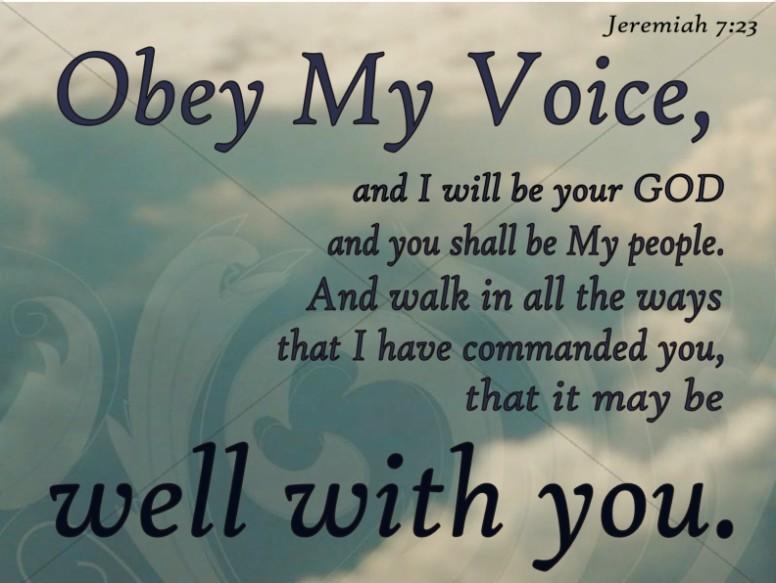 Heaven Photo And Jeremiah Verse