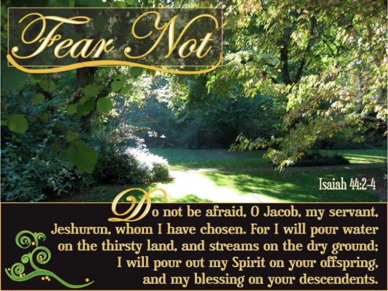 Fear Not Christian Photo