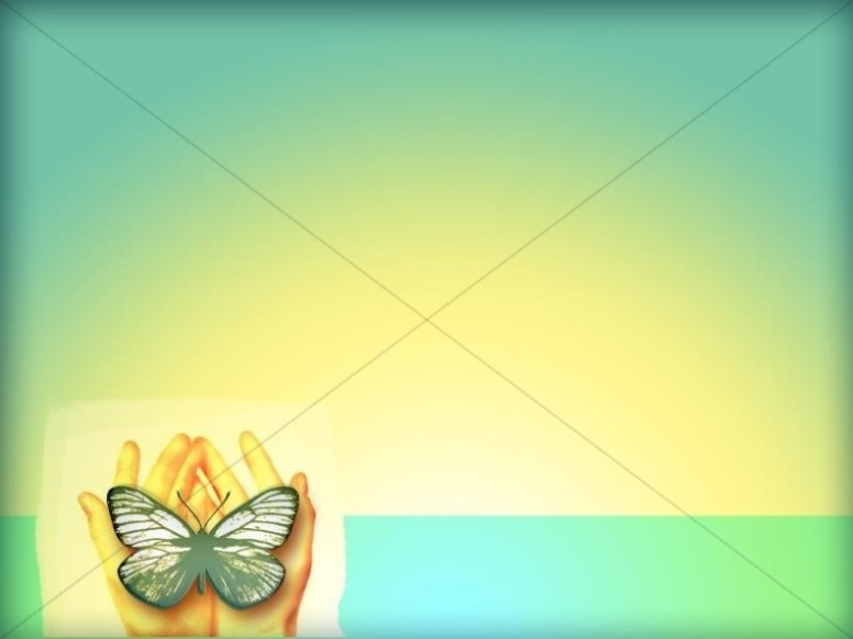 Butterfly in Hands Photo