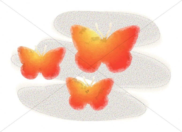 Three Graphic Butterflies
