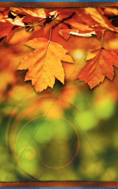 Autumn Leaves Church Bulletin Cover