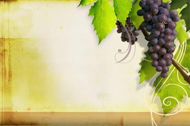 Grapevine Worship Video
