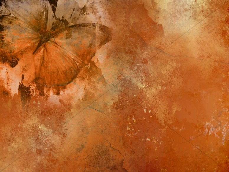 Butterfly Worship Background