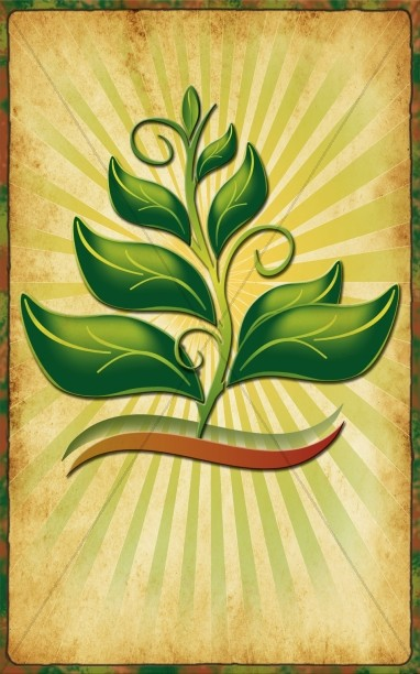 Growing In The Spirit Bulletin Cover Template