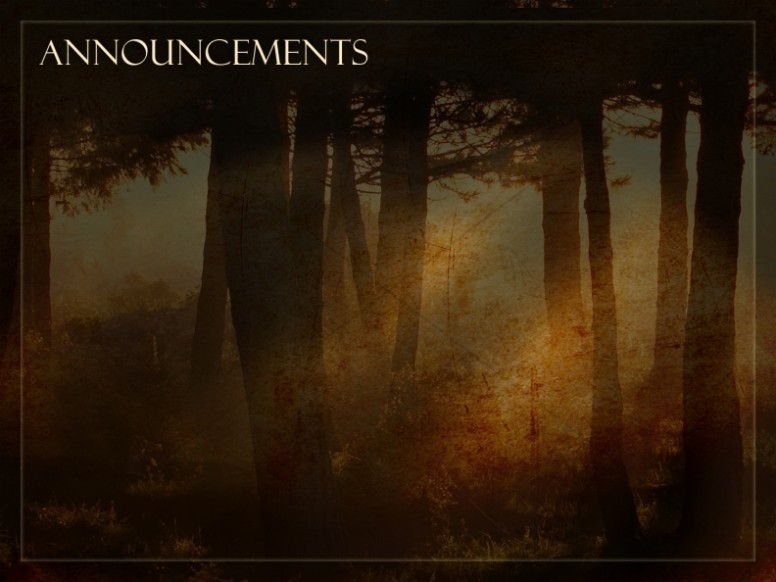 Sunlight And Trees Announcement Background