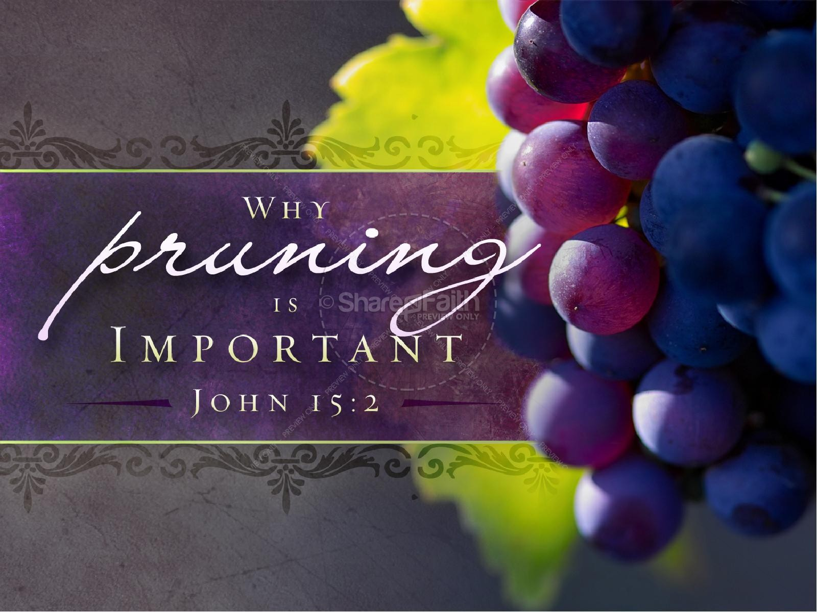 Pruning Is Important Christian